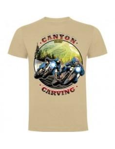 Canyon Carving Versión 2